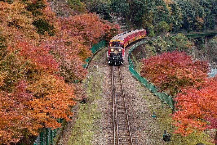 営業とは、相手の期待を越えるものを提供すること。 嵯峨野鉄道から学ぶ売上アップの秘訣