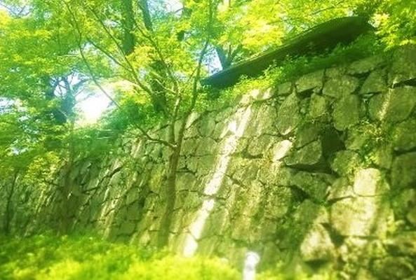 福岡城跡 Fukuoka-jo Castle trace