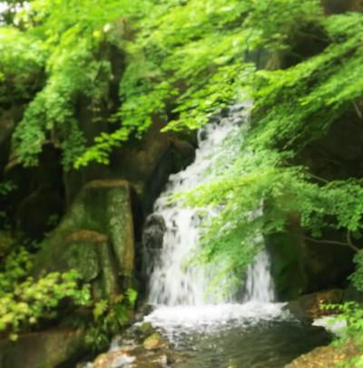 徳川園の滝Waterfall of Sono Tokugawa