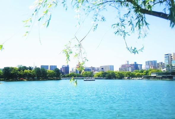 大堀公園 Ohori Park