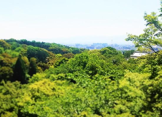 清水寺 Kiyomizu-dera Temple