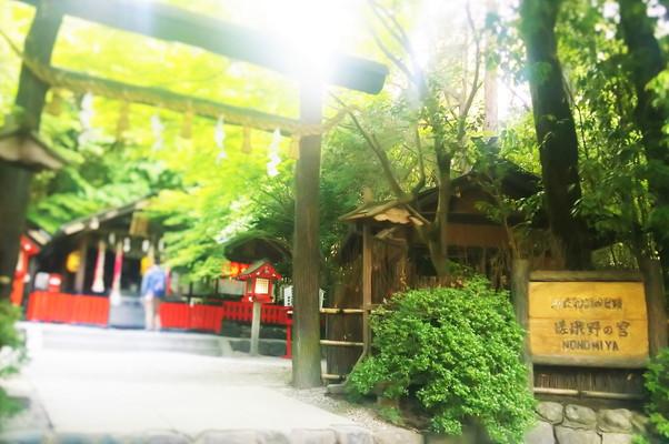 野宮神社 Nomiya Shrine